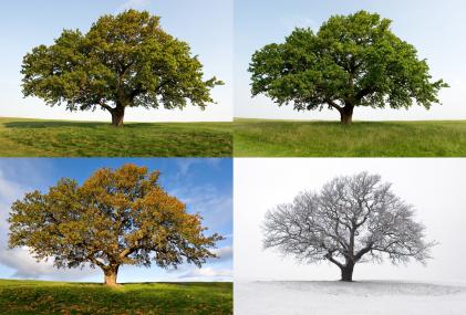 Personal Growth & Self Awareness  The Change Blog